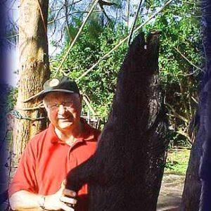 Wild Boar Hunt Report: February 12th, 2004