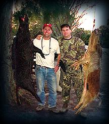 Wild Boar Hunt Report: January 29th, 2001