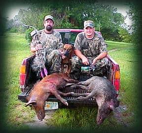 Wild Boar Hunt Report: September 9th, 2001