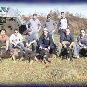 Wild Boar Hunt Report: February 11th, 2010