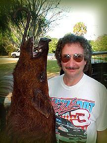Wild Boar Hunt Report: February 12th, 2001