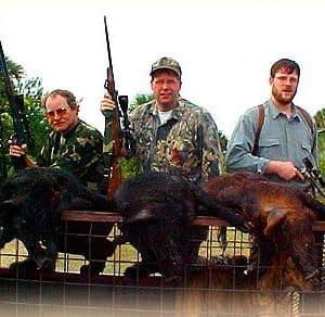 Wild Boar Hunt Report: January 27th, 2001