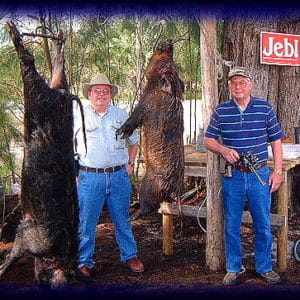 Wild Boar Hunt Report: February 7th, 2003