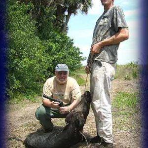 Wild Boar Hunt Report: April 3rd, 2008