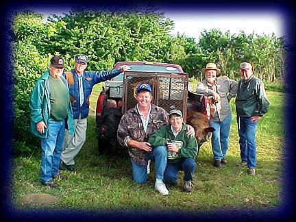 Boar English Group 2 13 02