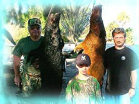 Wild Boar Hunt Report: February 22nd, 2001