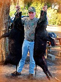 Wild Boar Hunt Report: January 17th, 2001