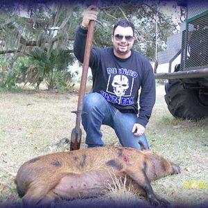 Wild Boar Hunt Report: February 5th, 2010