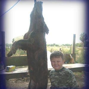Wild Boar Hunt Report: February 25th, 2007