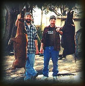 Wild Boar Hunt Report: January 28th, 2001