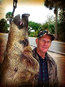 Wild Boar Hunt Report: February 5th, 2001