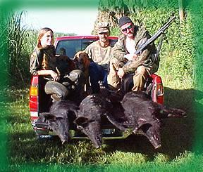 Wild Boar Hunt Report: July 29th, 2000