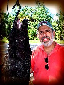 Wild Boar Hunt Report: October 1st, 2000